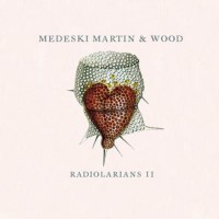 Purchase Medeski Martin & Wood - Radiolarians II
