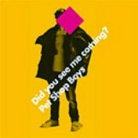 Purchase Pet Shop Boys - Did You See Me Coming (CDM)