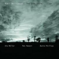 Purchase Robin Williamson - The Iron Stone