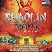 Purchase VA - VA - Shaolin Temple Riddim