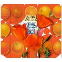 Purchase Brian Wilson - That Lucky Old Sun (DVDA)