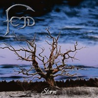 Purchase Fejd - Storm
