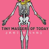 Purchase Tiny Masters Of Today - Skeletons