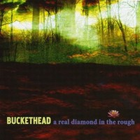 Purchase Buckethead - A Real Diamond In The Rough