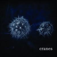 Purchase Cranes - Cranes