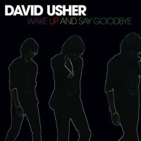 Purchase David Usher - Wake Up And Say Goodbye