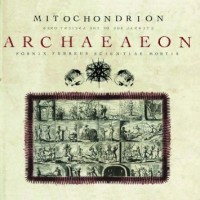 Purchase Mitochondrion - Archaeaeon