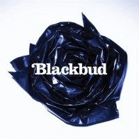 Purchase Blackbud - Blackbud