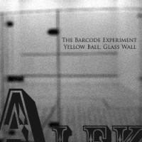 Purchase The Barcode Experiment - Yellow Ball, Glass Wall