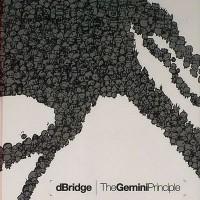 Purchase D Bridge - The Gemini Principle