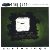 Purchase Trey Gunn - Raw Power