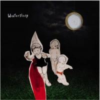 Purchase Wintersleep - Welcome To The Night Sky
