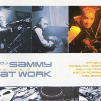 Purchase DJ Sammy - DJ Sammy At Work (In The Mix)