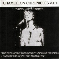 Purchase David Bowie - Chameleon Chronicles Volume 1