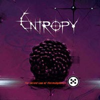 Purchase Entropy - The Second Law Of Thermodynami