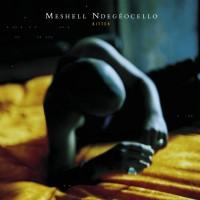 Purchase Meshell Ndegeocello - Bitter