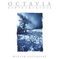 Purchase Octavia Sperati - Winter Enclosure