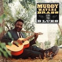 Purchase Muddy Waters - Brass And The Blues