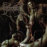 Purchase Beheaded - Recounts Of Disembodiment