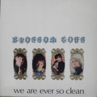 Purchase Blossom Toes - We Are Ever So Clean