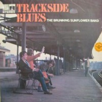 Purchase Brunning Hall Sunflower Blues Band - Trackside Blues