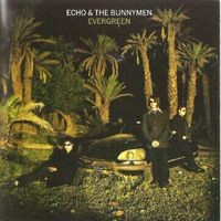 Purchase Echo & The Bunnymen - Evergreen