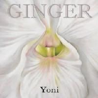 Purchase Ginger - Yoni