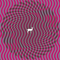 Purchase Deerhunter - Cryptograms