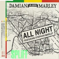 Purchase Damian Marley - All Night-CDM