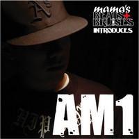 Purchase AM1 - Mamas Beats and Bruises