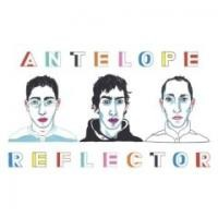 Purchase Antelope - Reflector