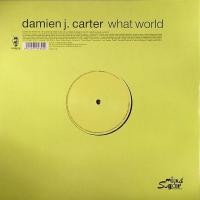 Purchase Damien J Carter - What World (Maxi)