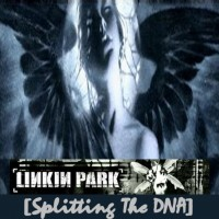 Purchase Linkin Park - Splitting The DNA CD1