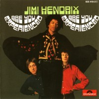 Purchase Jimi Hendrix - Are You Experienced (Vinyl)
