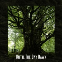 Purchase Pilori - Until The Day Dawn