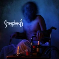 Purchase Sheephead - The Plague