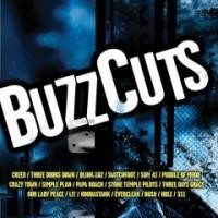 Purchase VA - Buzzcuts
