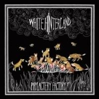 Purchase White Hinterland - Phylactery Factory