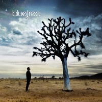 Purchase Bluetree - God Of This City