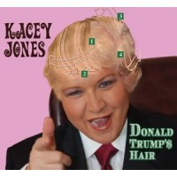 Purchase Kacey Jones - Donald Trump's Hair