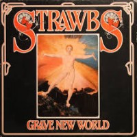 Purchase The Strawbs - Grave New World (Vinyl)