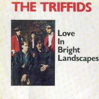 Purchase The Triffids - Love in bright landscapes