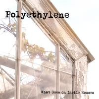 Purchase Polyethylene - What Goes on Inside Houses