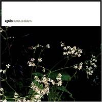 Purchase Agnes - Dumbles Debuts