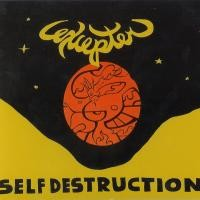 Purchase Excepter - Self Destruction