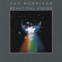 Purchase Van Morrison - Beautiful Vision (Vinyl)