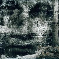 Purchase Anglagard - Epilog (Remastered 2010) CD1