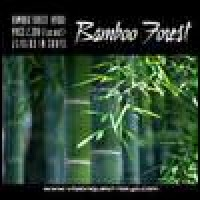 Purchase Bamboo Forest - Bamboo Forest
