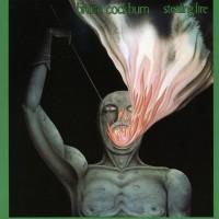 Purchase Bruce Cockburn - Stealing Fire