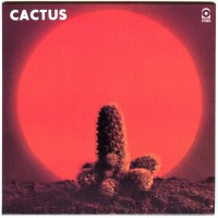 Purchase Cactus - Cactus